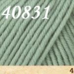 40831