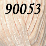 90053
