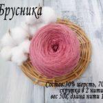 Брусника 028